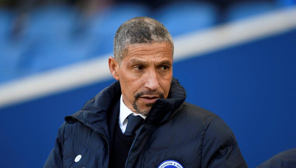 Chris Hughton Brighton Manager